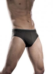 Icebreaker Brief M Nature 150