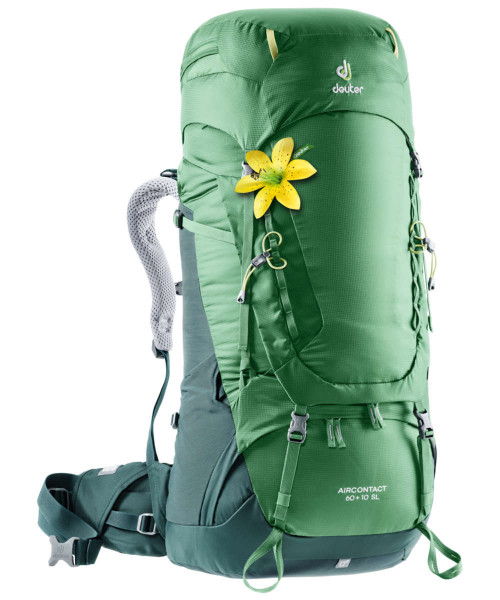 leaf-forest - Deuter Aircontact 60 + 10 SL